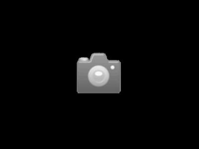 Essiccatore per legno Sauno con camera di essiccazione